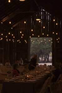 barn dinner halter ranch